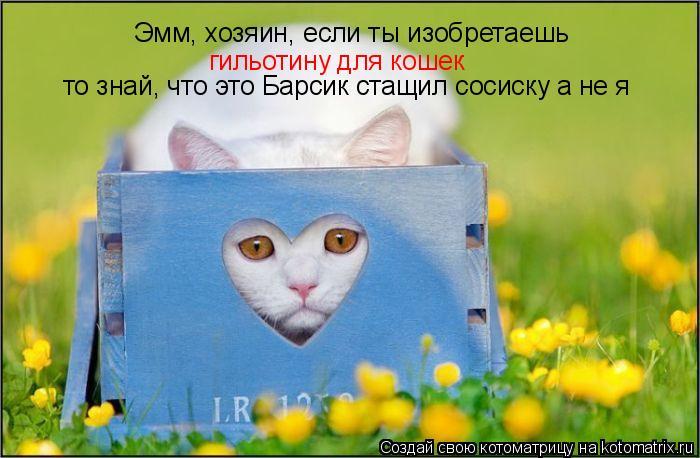 Котоматрица: Эмм, хозяин, если ты изобретаешь гильотину для кошек  то знай, что это Барсик стащил сосиску а не я