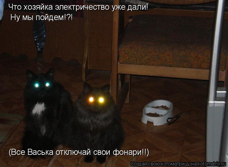 Котоматрица: Что хозяйка электричество уже дали! Ну мы пойдем!?! (Все Васька отключай свои фонари!!)
