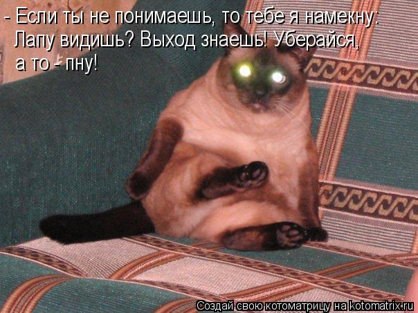 Котоматрица: - Если ты не понимаешь, то тебе я намекну: Лапу видишь? Выход знаешь! Уберайся, а то - пну!