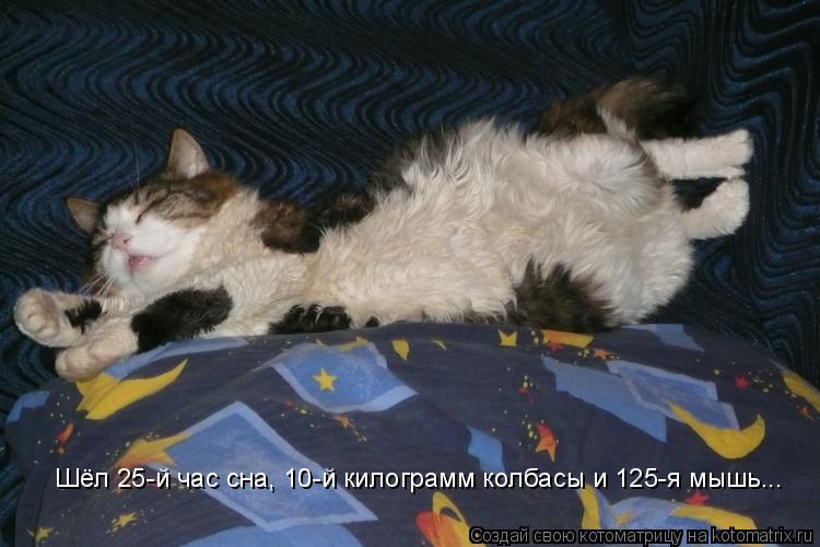Котоматрица: Шёл 25-й час сна, 10-й килограмм колбасы и 125-я мышь...