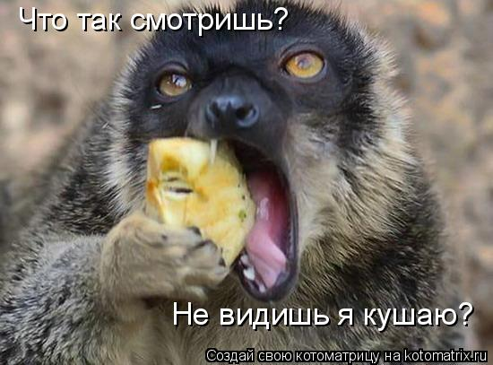 Котоматрица: Что так смотришь? Не видишь я кушаю?