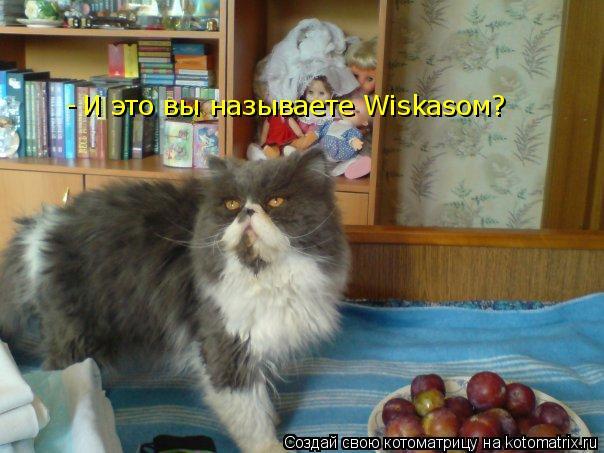Котоматрица: И это вы называете Wiskasом? -