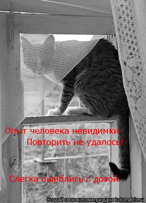 Котоматрица: Опыт человека невидимки  Повторить не удалось! Слегка ошиблись с дозой.