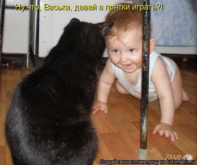Котоматрица: Ну что, Васька, давай в прятки играть?!