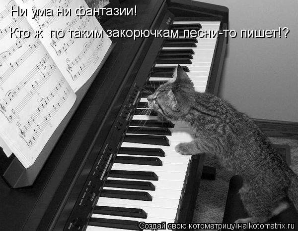 Котоматрица: Ни ума ни фантазии! Кто ж  по таким закорючкам песни-то пишет!?