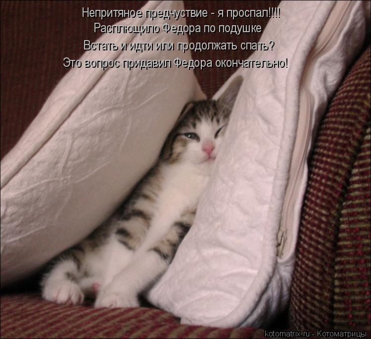 Котоматрица: Непритяное предчуствие - я проспал!!!! Расплющило Федора по подушке  Встать и идти или продолжать спать? Это вопрос придавил Федора окончате