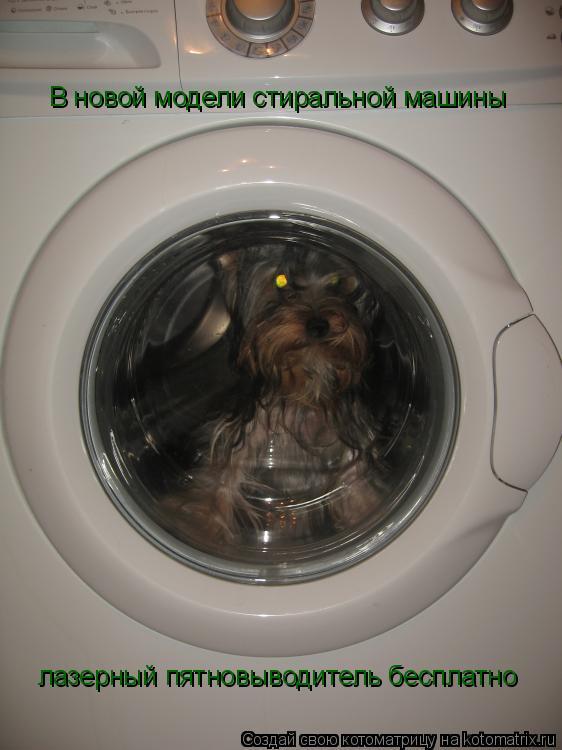 Котоматрица: В новой модели стиральной машины лазерный пятновыводитель бесплатно