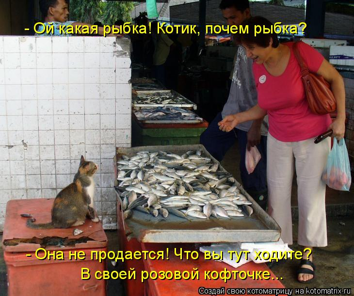Котоматрица: - Ой какая рыбка! Котик, почем рыбка?  - Она не продается! Что вы тут ходите?  В своей розовой кофточке...