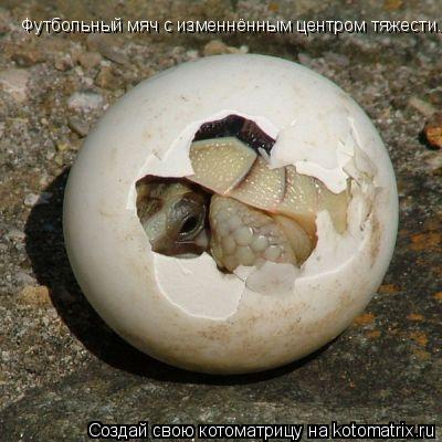 Котоматрица: Футбольный мяч с изменнённым центром тяжести.