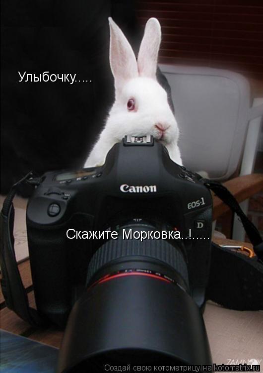 Котоматрица: Улыбочку..... Скажите Морковка..!.....