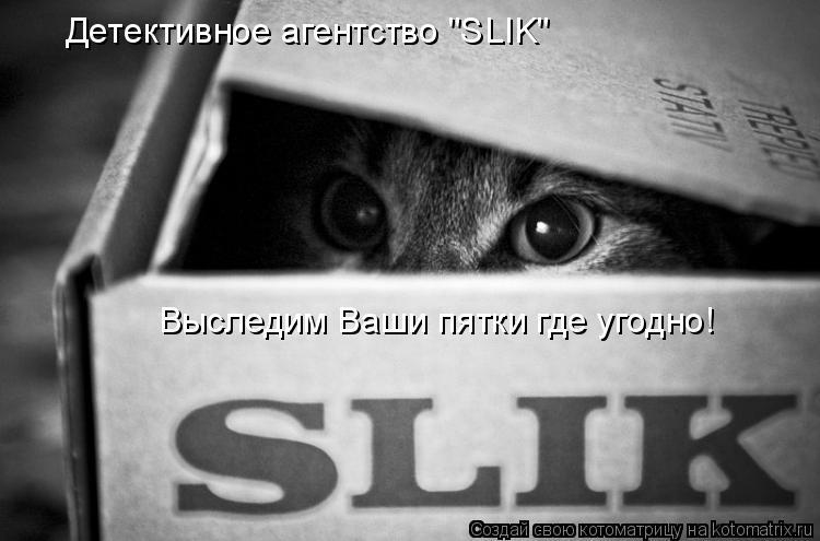 """Котоматрица: Детективное агентство """"SLIK"""" Выследим Ваши пятки где угодно!"""