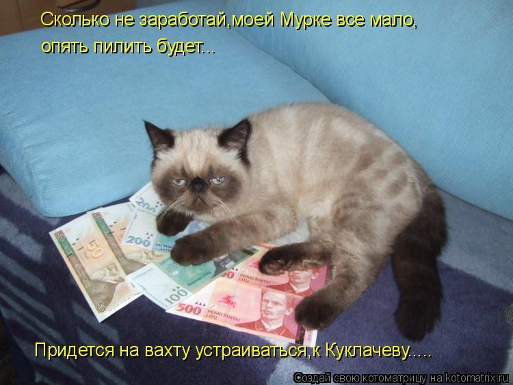 Котоматрица: Сколько не заработай,моей Мурке все мало, опять пилить будет... Придется на вахту устраиваться,к Куклачеву.....