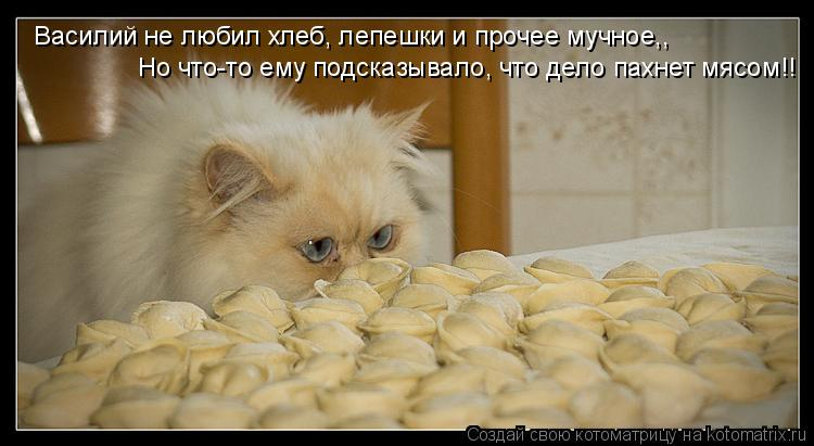 Котоматрица: Василий не любил хлеб, лепешки и прочее мучное,, Но что-то ему подсказывало, что дело пахнет мясом!!