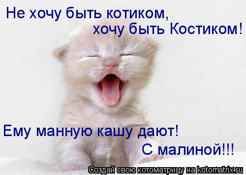 Котоматрица: Не хочу быть котиком,  хочу быть Костиком! Ему манную кашу дают!  С малиной!!!