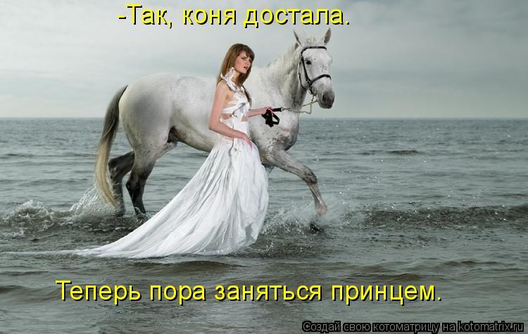 Котоматрица: -Так, коня достала. Теперь пора заняться принцем.