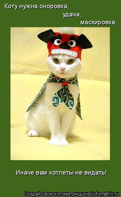 Котоматрица: Коту нужна сноровка, удача, маскировка. Иначе вам котлеты не видать!