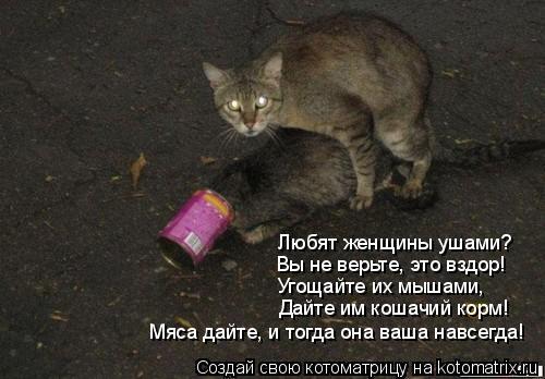 Котоматрица: Любят женщины ушами? Вы не верьте, это вздор! Угощайте их мышами, Дайте им кошачий корм! Мяса дайте, и тогда она ваша навсегда!