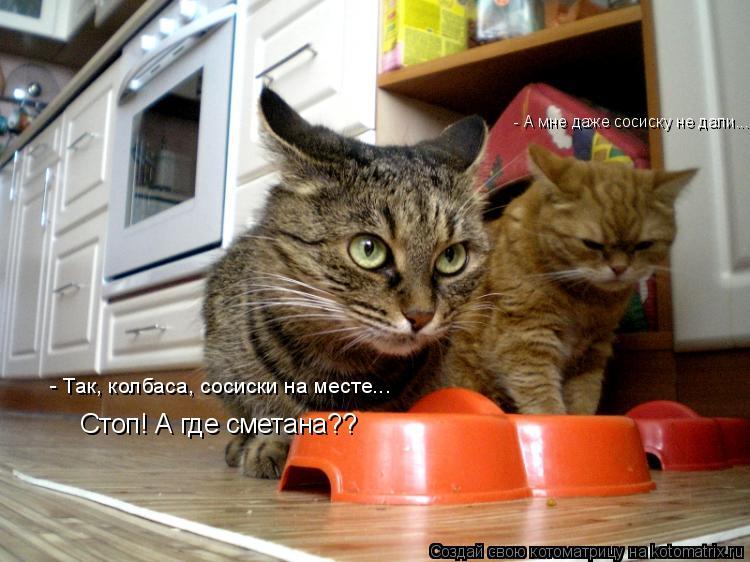 Котоматрица: - Так, колбаса, сосиски на месте... Стоп! А где сметана?? - А мне даже сосиску не дали...