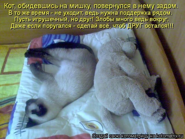 Котоматрица: Кот, обидевшись на мишку, повернулся в нему задом. В то же время - не уходит, ведь нужна поддержка рядом. Пусть игрушечный, но друг! Злобы мног