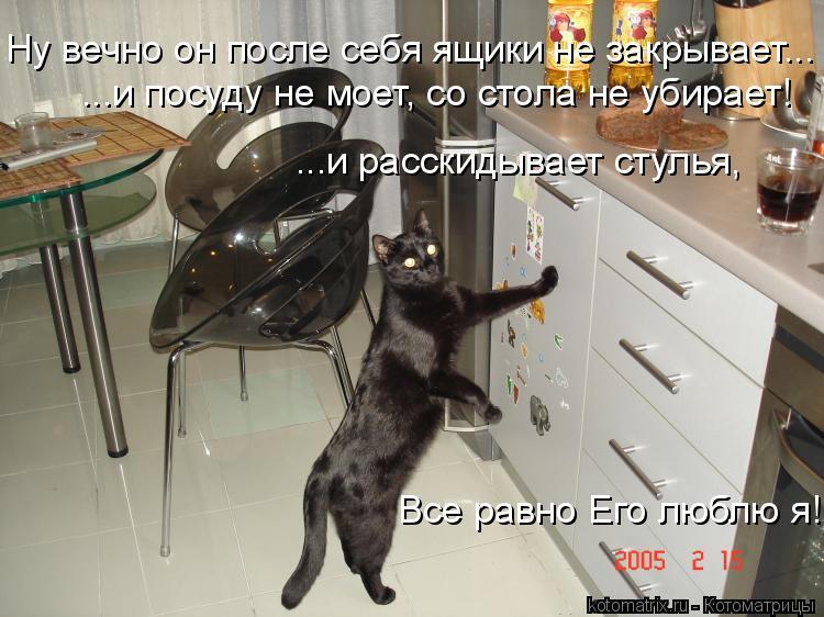 Котоматрица: Ну вечно он после себя ящики не закрывает... ...и посуду не моет, со стола не убирает! ...и расскидывает стулья, Все равно Его люблю я!