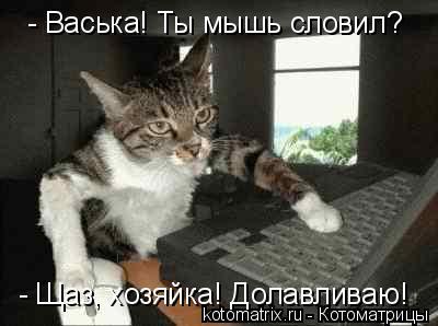 Котоматрица: - Васька! Ты мышь словил? - Щаз, хозяйка! Долавливаю!