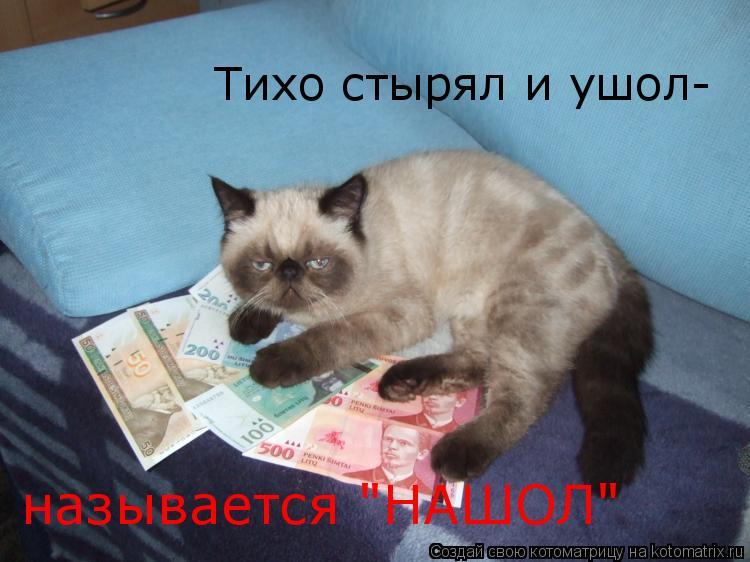 """Котоматрица: Тихо стырял и ушол- называется """"НАШОЛ"""""""