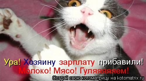 Котоматрица: Ура! Хозяину зарплату прибавили! Молоко! Мясо! Гуляяяяяем!