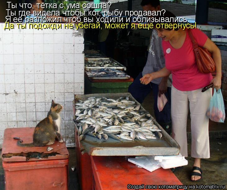 Котоматрица: Ты что, тётка с ума сошла?  Ты где видела чтобы кот, рыбу продавал? Я её разложил чтоб вы ходили и облизывались. Да ты подожди не убегай, может
