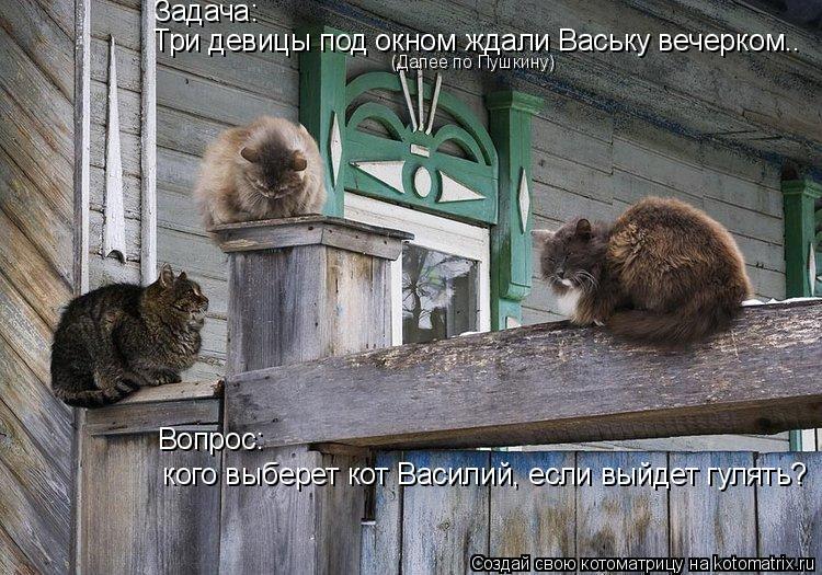 Котоматрица: Три девицы под окном ждали Ваську вечерком.. Задача: (Далее по Пушкину)  кого выберет кот Василий, если выйдет гулять? Вопрос: