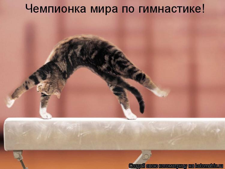 Котоматрица: Чемпионка мира по гимнастике!