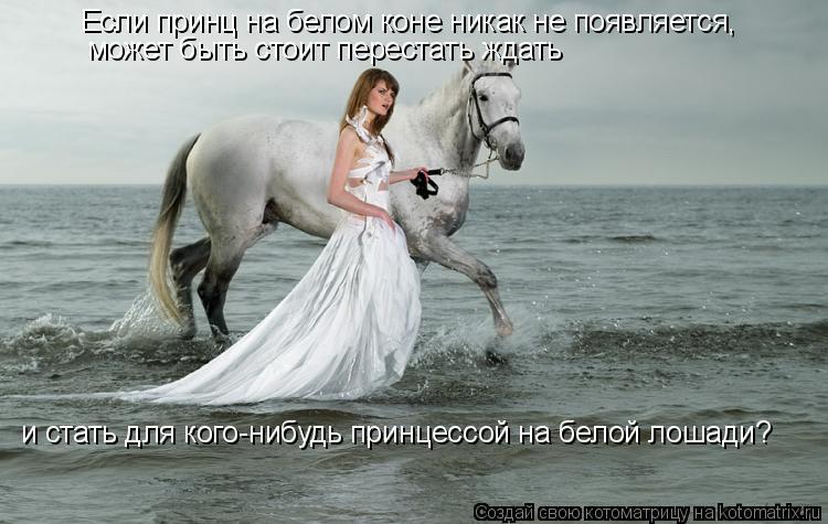 Котоматрица: Если принц на белом коне никак не появляется, может быть стоит перестать ждать и стать для кого-нибудь принцессой на белой лошади?