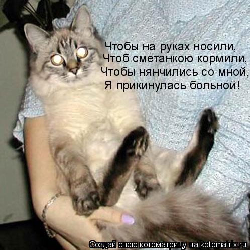 Котоматрица: Чтоб сметанкою кормили, Чтобы на руках носили,  Чтобы нянчились со мной, Я прикинулась больной!