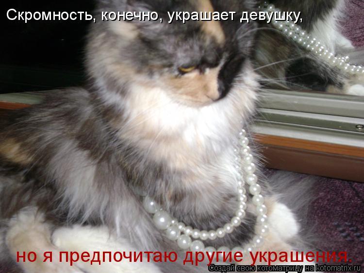 Котоматрица: Скромность, конечно, украшает девушку, но я предпочитаю другие украшения.