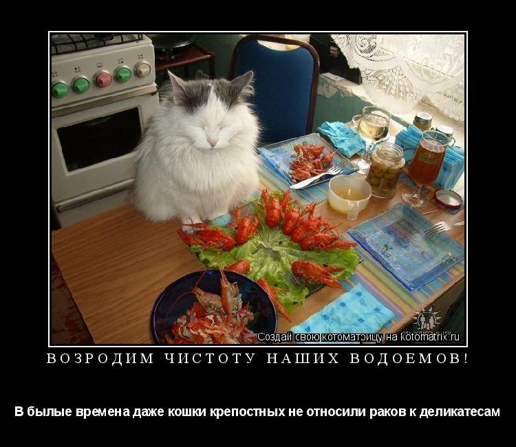 Котоматрица: Возродим чистоту наших водоемов! В былые времена даже кошки крепостных не относили раков к деликатесам