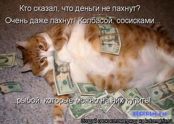 Котоматрица: Кто сказал, что деньги не пахнут? Очень даже пахнут! Колбасой, сосисками... ...рыбой, которые можно на них купить!