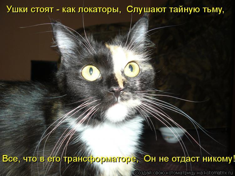 Котоматрица: Ушки стоят - как локаторы,  Слушают тайную тьму,  Все, что в его трансформаторе,  Он не отдаст никому!