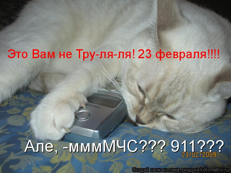 Котоматрица: Але, -мммМЧС??? 911???  Это Вам не Тру-ля-ля! 23 февраля!!!!