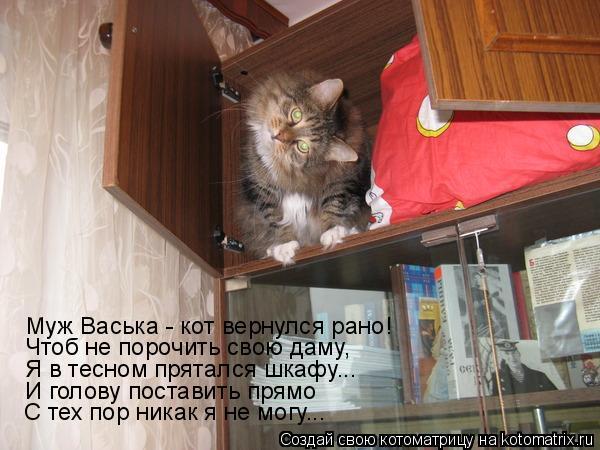 Котоматрица: Чтоб не порочить свою даму, Муж Васька - кот вернулся рано! Я в тесном прятался шкафу... И голову поставить прямо С тех пор никак я не могу...