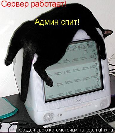 Котоматрица: Сервер работает! Админ спит!
