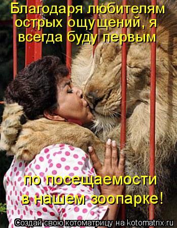 Котоматрица: Благодаря любителям острых ощущений, я всегда буду первым по посещаемости в нашем зоопарке!