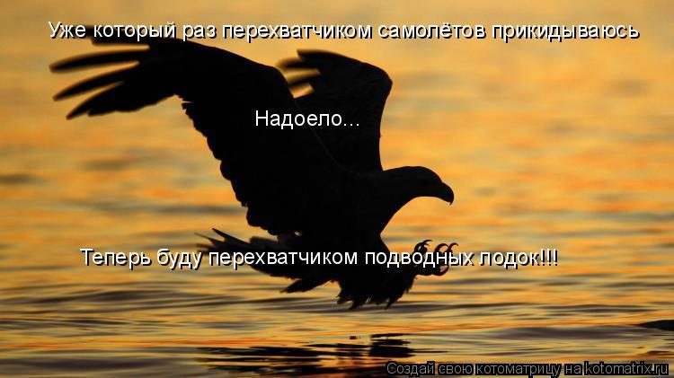 Котоматрица: Уже который раз перехватчиком самолётов прикидываюсь Надоело... Теперь буду перехватчиком подводных лодок!!!