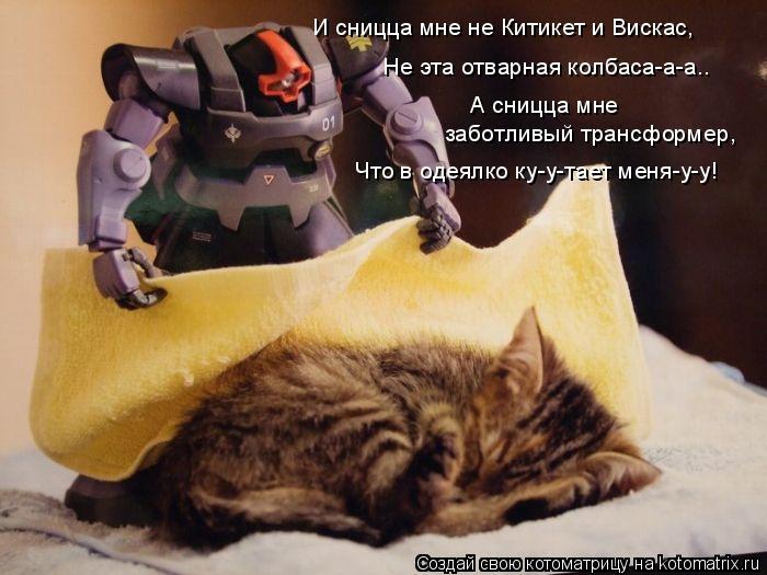 Котоматрица: И сницца мне не Китикет и Вискас, Не эта отварная колбаса-а-а.. А сницца мне  заботливый трансформер, Что в одеялко ку-у-тает меня-у-у!