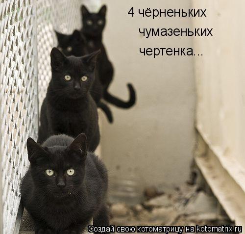 Котоматрица: 4 чёрненьких чумазеньких чертенка...