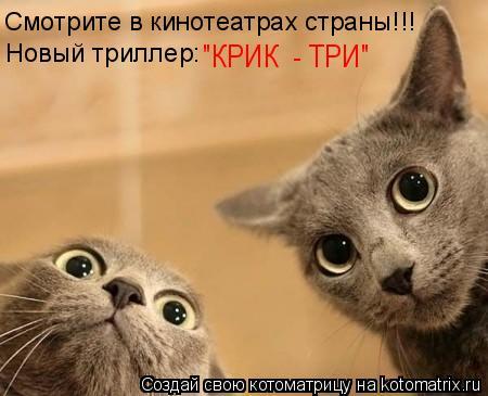 """Котоматрица: Смотрите в кинотеатрах страны!!! Новый триллер: """"КРИК  - ТРИ"""""""
