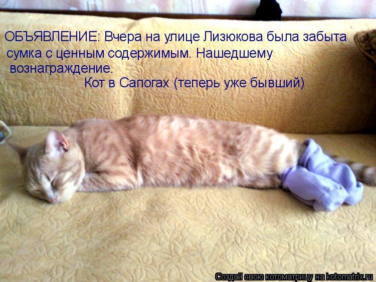 Котоматрица: ОБЪЯВЛЕНИЕ: Вчера на улице Лизюкова была забыта сумка с ценным содержимым. Нашедшему  вознаграждение.  Кот в Сапогах (теперь уже бывший)