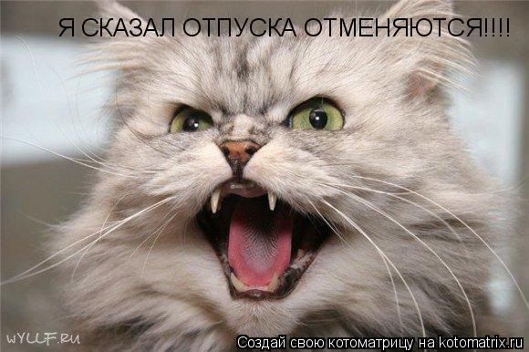Котоматрица: Я СКАЗАЛ ОТПУСКА ОТМЕНЯЮТСЯ!!!!