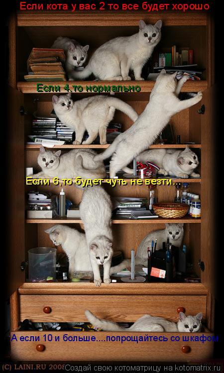 Котоматрица: Если кота у вас 2 то все будет хорошо Если 4,то нормально  Если 6,то будет чуть не везти... А если 10 и больше....попрощайтесь со шкафом