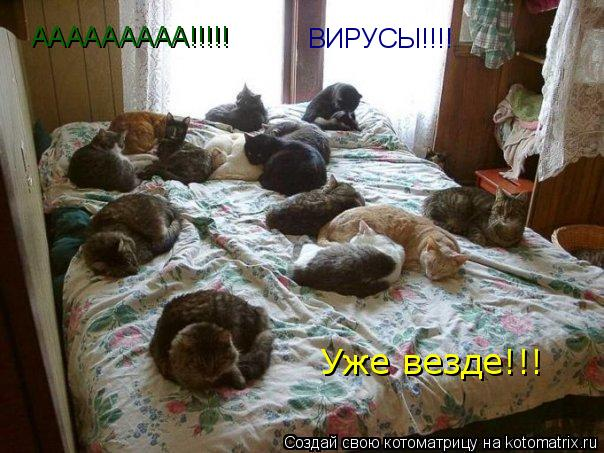 Котоматрица: ААААААААА!!!!! ВИРУСЫ!!!! Уже везде!!!