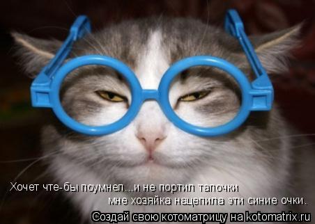 Котоматрица: Хочет чте-бы поумнел...и не портил тапочки мне хозяйка нацепила эти синие очки.