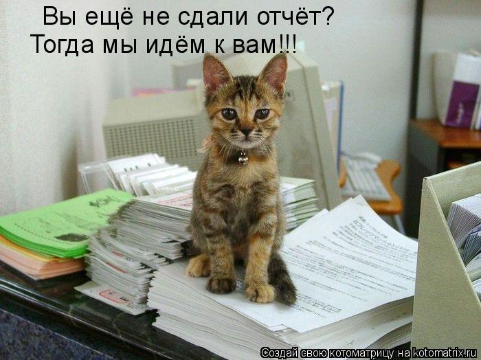 Котоматрица: Вы ещё не сдали отчёт? Тогда мы идём к вам!!!